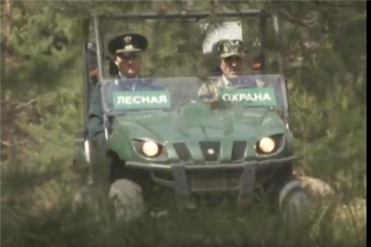 Лесовосстановление в Заволжье и профилактика лесных пожаров (ЮТВ)