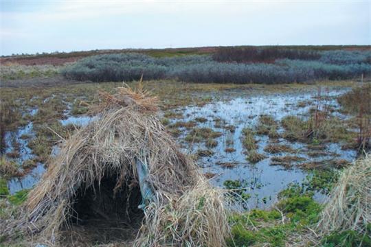 В Чувашии подведены итоги весенней охоты на птицу