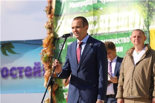 До 2021 года в Чувашской Республике на региональный проект «Сохранение лесов» нацпроекта «Экология» предусмотрено 317 млн рублей