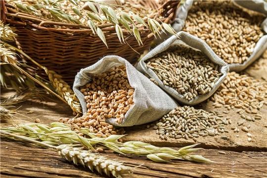 В хозяйствах республики продолжается подготовка семенного материала