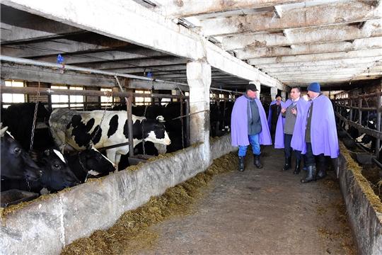 Ветслужбе Ибресинсого района поставлена задача усилить профилактику инфекционных болезней животных
