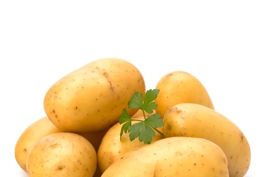Путину понравилась подаренная президентом Белоруссии картошка