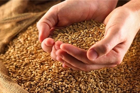 93% семян, заготовленных аграриями республики для весеннего сева, кондиционны