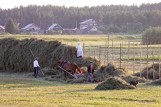 Плотников рассказал, как реализовать программу развития сельских территорий