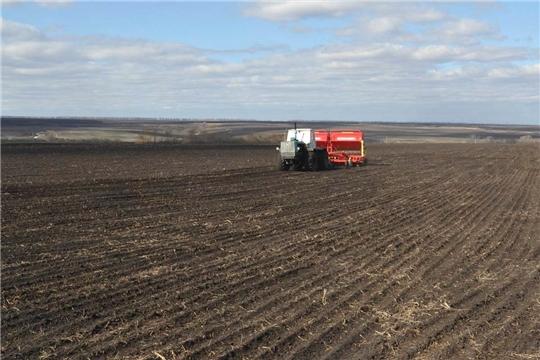 Сев яровых зерновых культур ведется в 5 муниципальных районах
