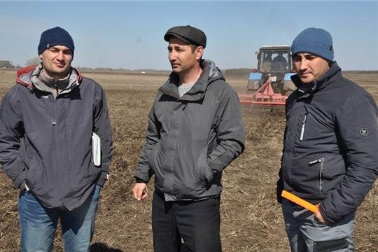 В хозяйствах Вурнарского района приступили к севу горчицы