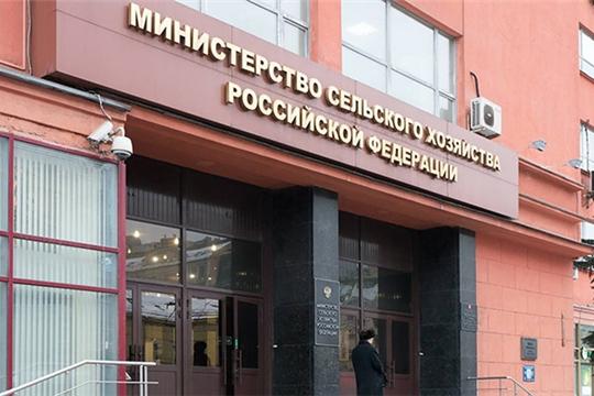 Минсельхоз России разработал подпрограмму «Развитие производства кормов и кормовых добавок для животных»
