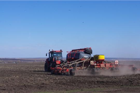 На 25 апреля сев яровых зерновых культур ведется во всех муниципальных районах республики