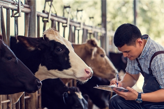 Дополнительная государственная поддержка фермеров и сельской кооперации