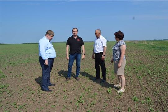 Заместитель министра Денис Паспеков ознакомился с ходом полевых работ в хозяйствах Краснормейского района