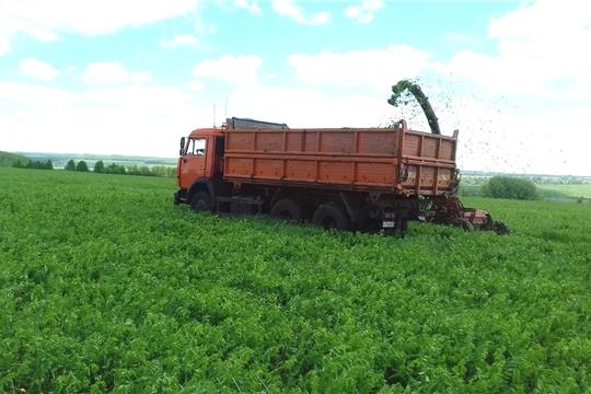Хозяйства Цивильского района первыми в республике приступили к скашиванию многолетних трав