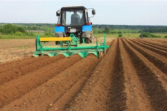 На 22 мая в большинстве хозяйств республики сев яровых зерновых и зернобобовых культур завершен