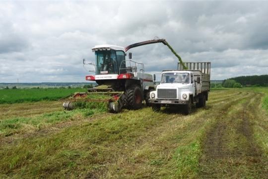 Хозяйства Вурнарского района приступили к заготовке кормов