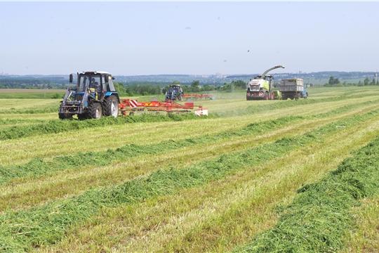 Во всех муниципальных районах республики приступили к первому укосу многолетних трав