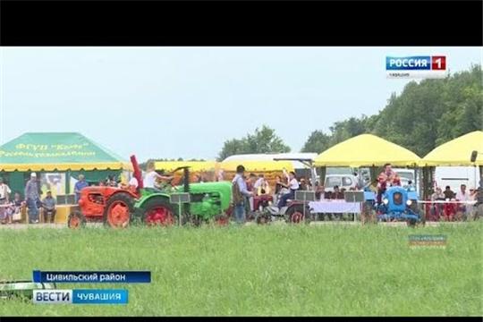 """Традиционная выставка """"День поля"""" проходит в Цивильском районе"""