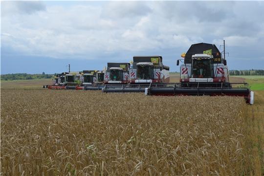 Уборка зерновых и зернобобовых культур идет в хозяйствах 18 муниципальных районов республики