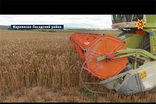 Как проходят сельскохозяйственные работы в Мариинско-Посадском районе