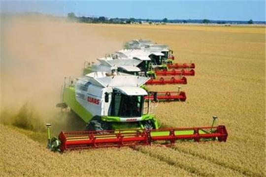 В республике намолочено 19,8 тыс. тонн зерна при урожайности 28,5 ц/га