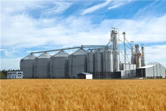 Утверждена стратегия развития зернового комплекса до 2035 года
