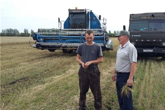 В хозяйствах Шемуршинского района намолочено 4613 т зерна