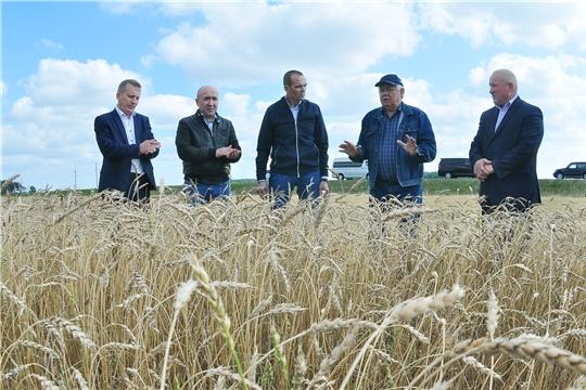 Михаил Игнатьев ознакомился с ходом уборки урожая в Комсомольском и Яльчикском районах