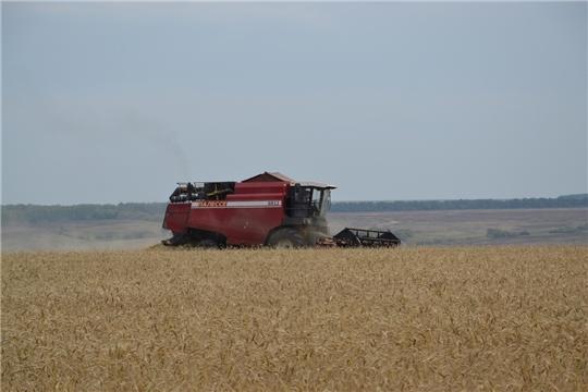 План валового сбора зерна республикой выполнен на 108,4%.