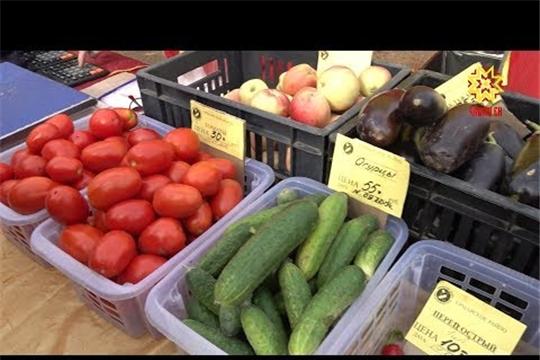 Картофель, капуста, лук, морковь по выгодной цене