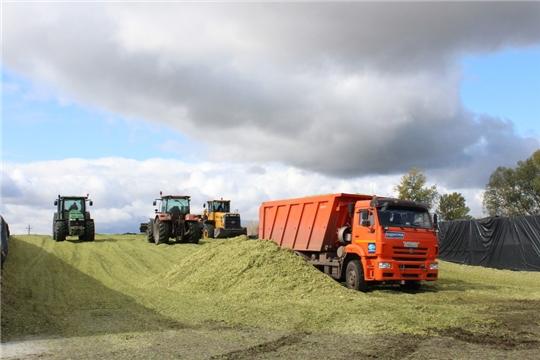 Аграрии Цивильского района продолжают заготовку кормов