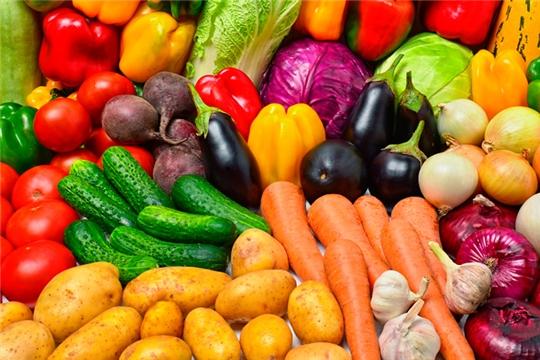 В республике продолжаются ярмарочные продажи сельскохозяйственной продукции «Дары осени – 2019»