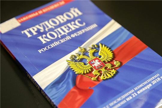 В Госдуме разъяснили, как россияне могут работать удаленно