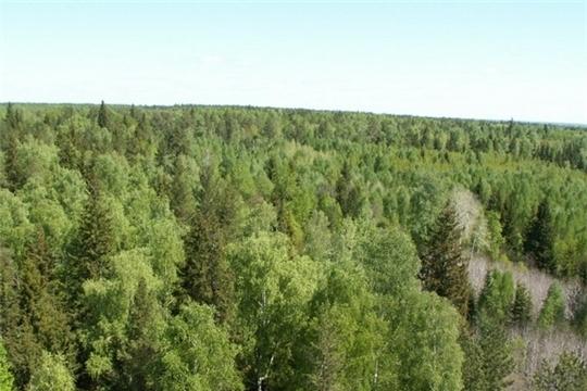 Извещение о проведении в 2020 году государственной кадастровой оценки земель лесного фонда, земель особо охраняемых территорий и объектов на территории Чувашской Республики