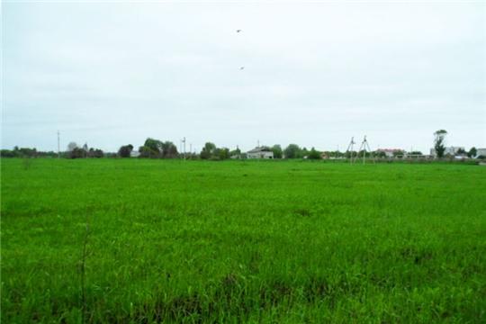 В городе Ядрин многодетным семьям предоставляются земельные участки