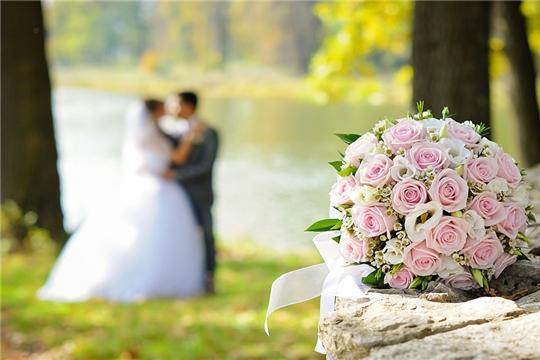 Свадебный сезон в разгаре: летом растет число желающих создать свою семью