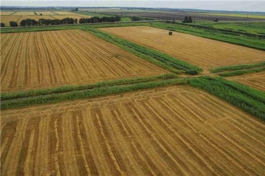 Продолжается работа по вовлечению в оборот невостребованных земельных долей, зарегистрированных в муниципальную собственность