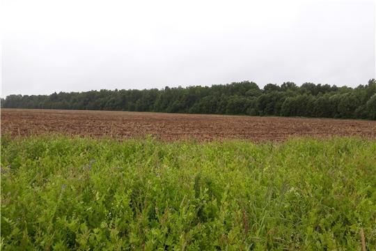 Вопросы эффективности использования сельхозземель – в центре внимания
