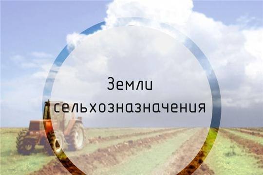 С начала 2019 года рассмотрено 391 извещение о намерении продать земельные участки сельхозназначения