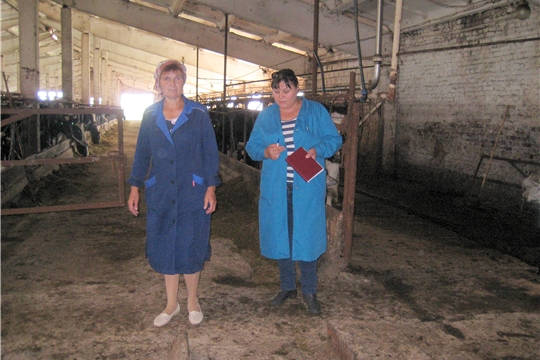 В Моргаушском районе продолжается объезд сельскохозяйственных предприятий по изучению заготовке кормов и подготовке животноводческих помещений к зимовке