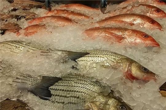 На что обратить внимание при покупке рыбы