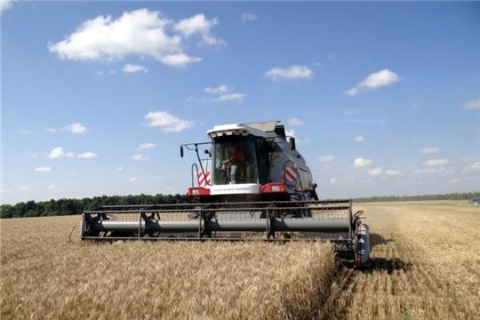 Средняя урожайность зерновых  по району–25,1 ц. с га, в ряде хозяйств – более 30ц.с га
