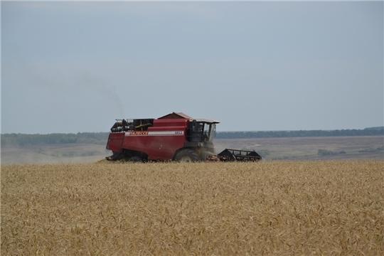 План валового сбора зерна в республике выполнен на 108,4%