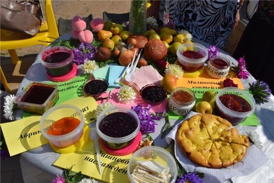 В День города Чебоксары пройдет фестиваль «Ягода-малина» среди территориальных общественных самоуправлений