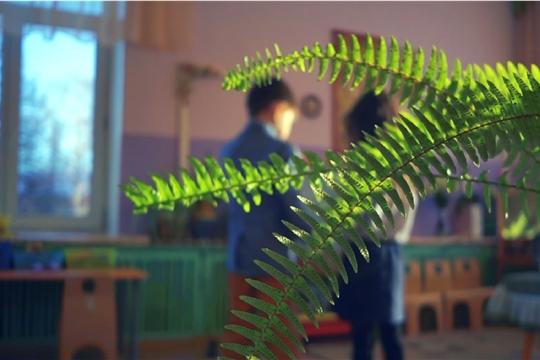 Муниципальный проект «Будущих родителей растим с детства»: ролик д/с № 5 «Цветик-семицветик»