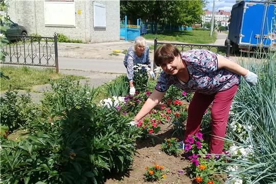 Цветоводы из ТОС «Юраковский» украсили клумбы микрорайона