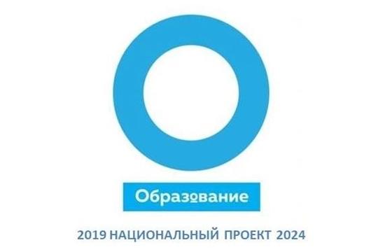 Национальный проект «Образование», региональный проект «Молодые профессионалы», 2019 год