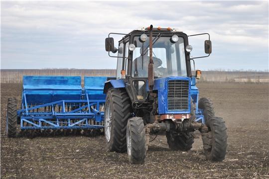 Весенние полевые работы в Шемуршинском районе набирают обороты