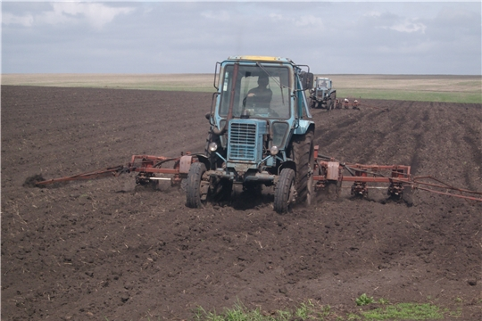 В крестьянских (фермерских) хозяйствах Карабай - Шемуршинского сельского поселения весенние полевые работы продолжаются