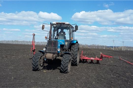 В Шемуршинском районе весенние полевые работы  проходят активными темпами