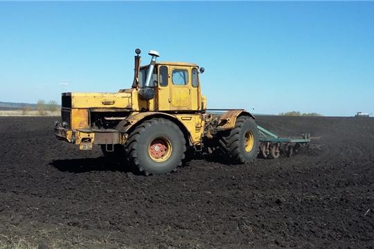 Весенние полевые работы в хозяйствах Шемуршинского района продолжаются