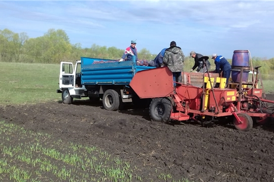 Ход весенне-полевых работ в Шемуршинском районе на 9 мая 2019 года