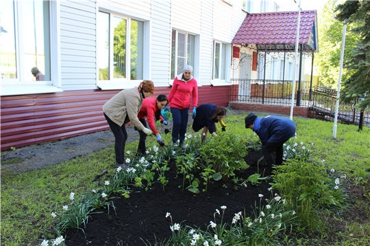 Работники администрации Шемуршинского района провели субботник по благоустройству и озеленению территории здания